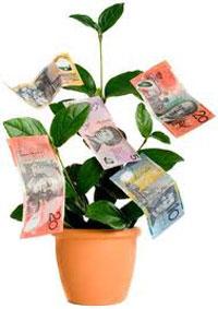 Money Tree - cara paling mudah mendapatkan uang dari internet