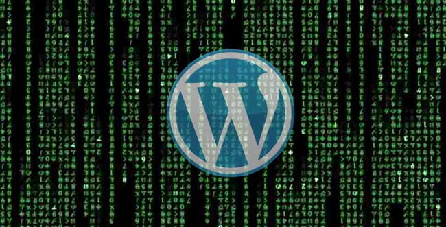 Kumpulan Kode Pilihan WordPress Oprek Theme