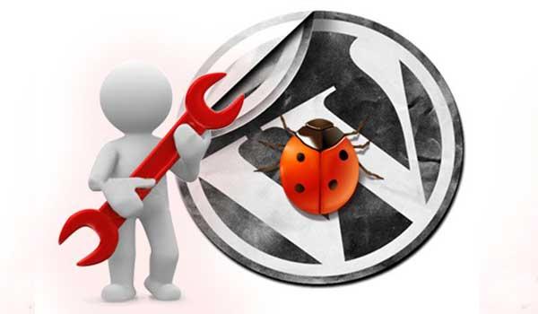 Cara Debug WordPress Aman Hanya untuk Admin